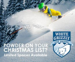 White Grizzly Catskiing December 2015