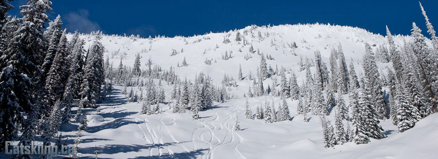 Big-Red-cats-catskiing-BC-Powder