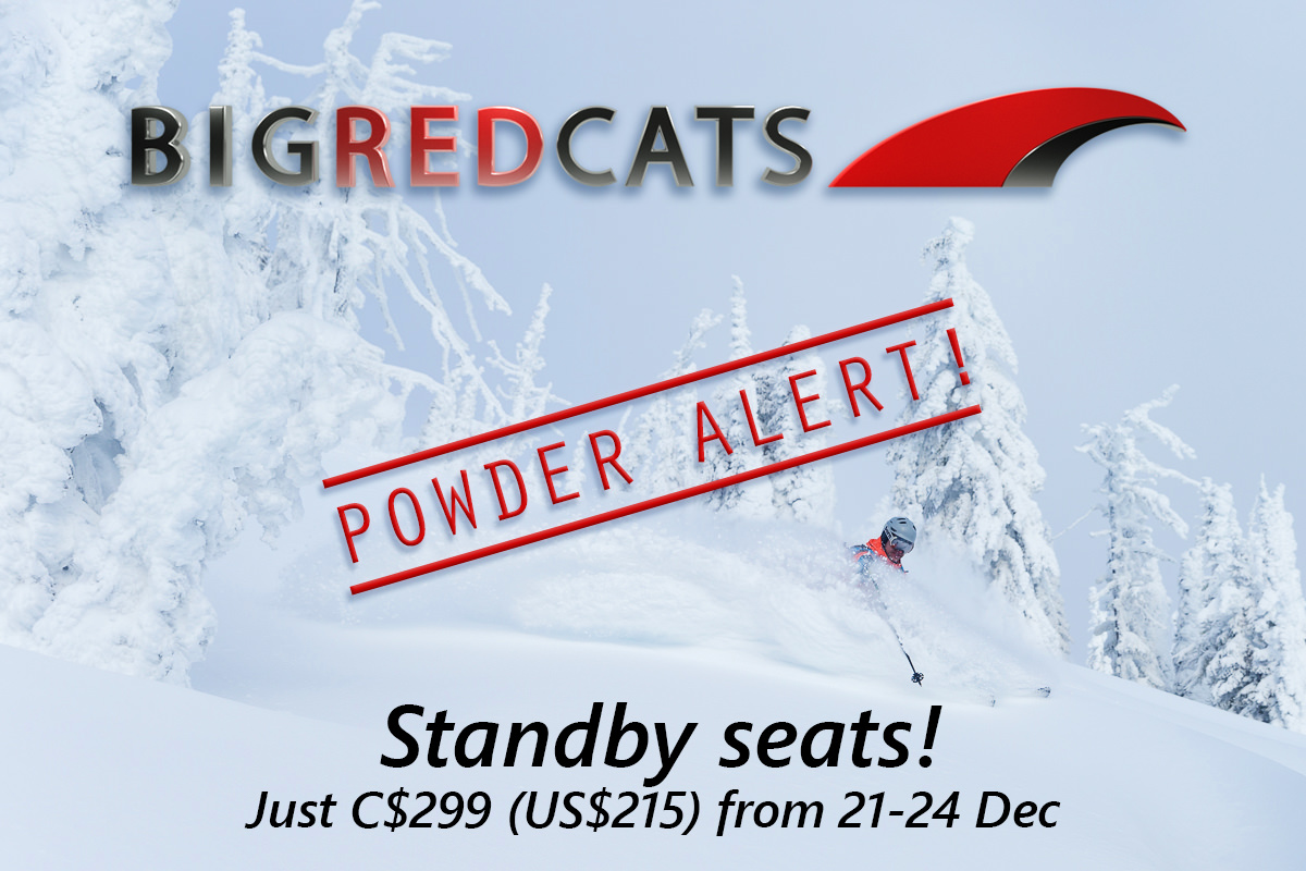 BIG RED CATS - Powder Alert!