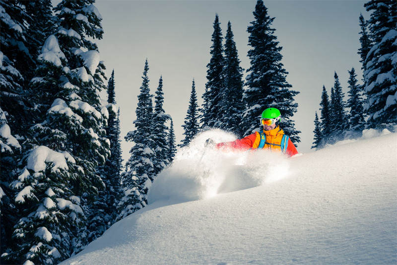 Give the Gift of Deep, Blower Pow at White Grizzly Catskiing